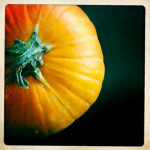 Day 304: Pumpkins aren't welcome in Office Town