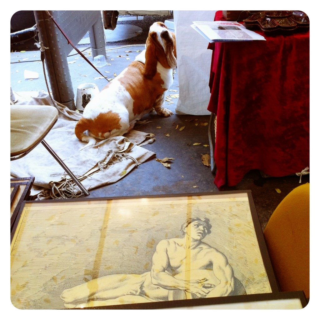 Flea Market Dog 1