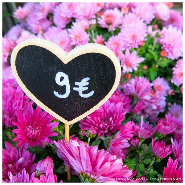 Pink Spring Flowers Nine Euro WATERMARK