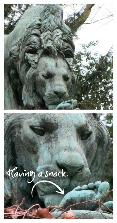 lion snack