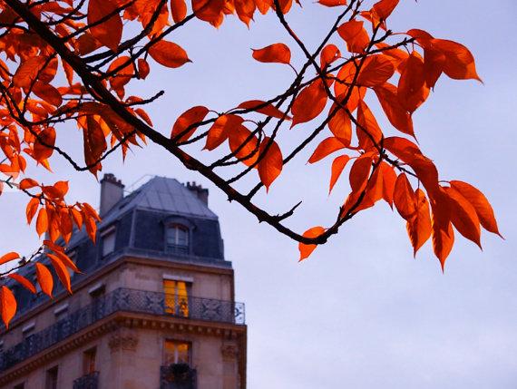 autumn in paris apartment