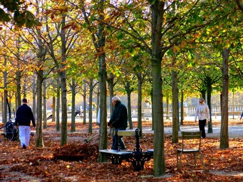 raking in luxembourg