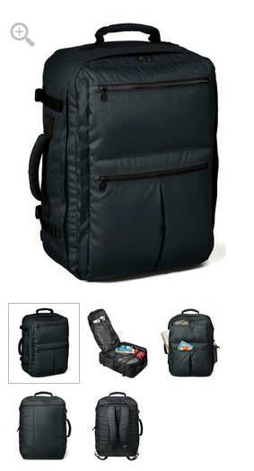Rick Steves back pack