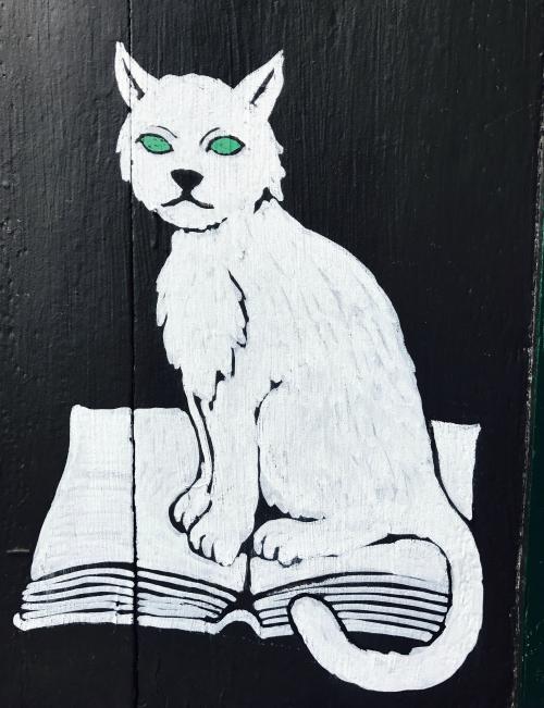 IMG_1984 cat graffiti