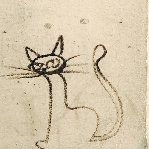 IMG_2257 cat graffiti