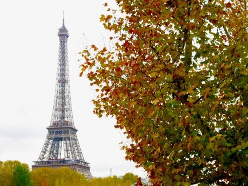 Eiffel Tower Autumn 500 x 375